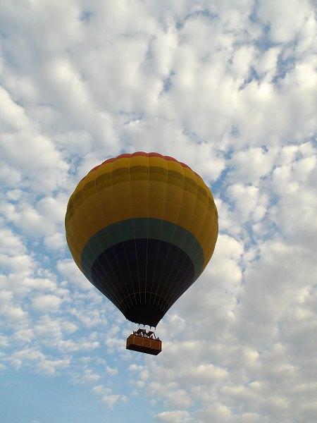Queen Game Drive Balloon