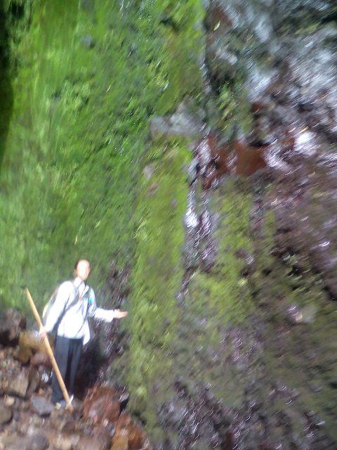 Gorge Walk滝1