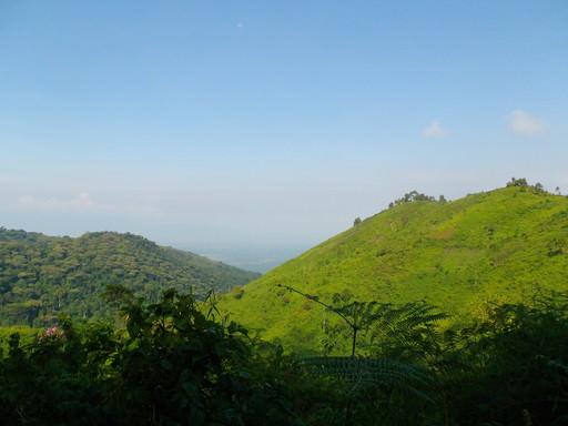 Rushara Hill View