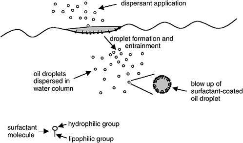 Oil Spill Dispersants: Efficacy and Effects