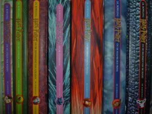 Harry Potter-boeken op een rij. (Foto: Melanie Zierse)