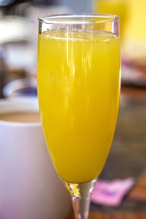 mimosa-1-of-1