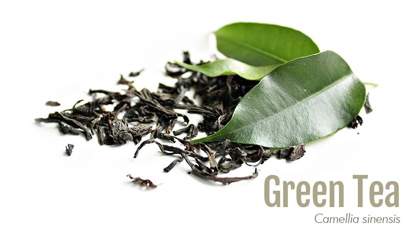 Green tea leaf with label