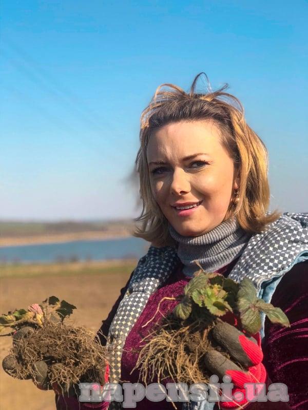 Садовод из Тернопольской области собрала в свою коллекцию самые вкусные сорта земляники