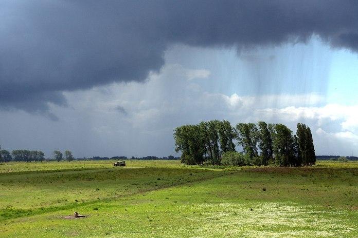 погода июнь