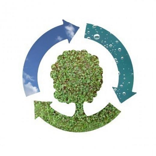 Сбор и утилизация вторичных ресурсов: превращаем отходы в реальные доходы