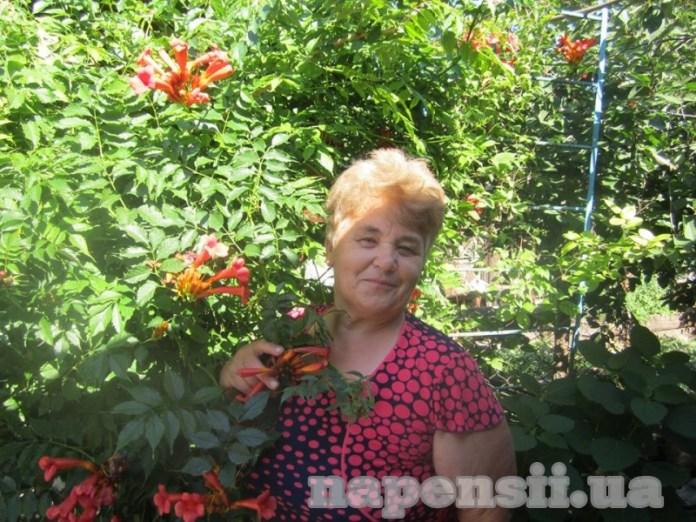 Винничанка засадила огород цветами