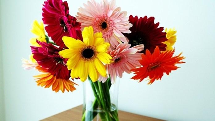 Чтобы цветы дольше в вазе стояли