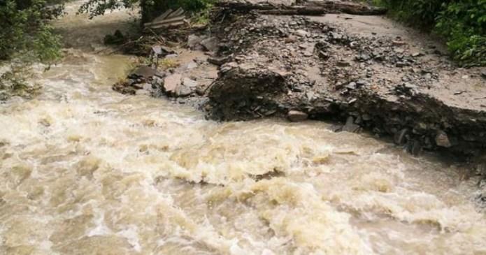 Из-за проливных дождей аграрии Прикарпатья несут большие убытки