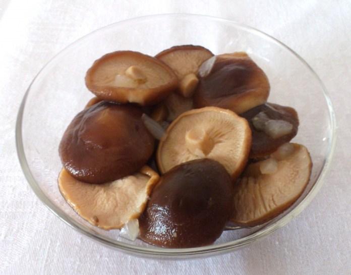 Прикарпатець на власному подвір'ї вирощує гриби шиїтаке