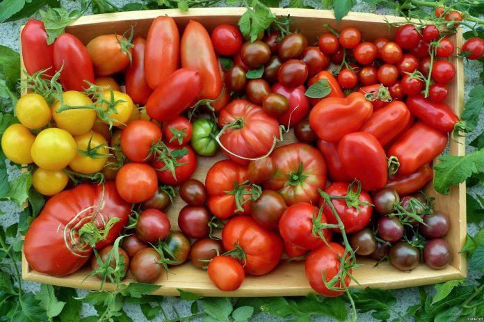 томати