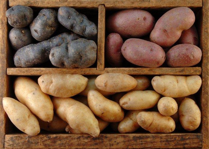 картофель цены