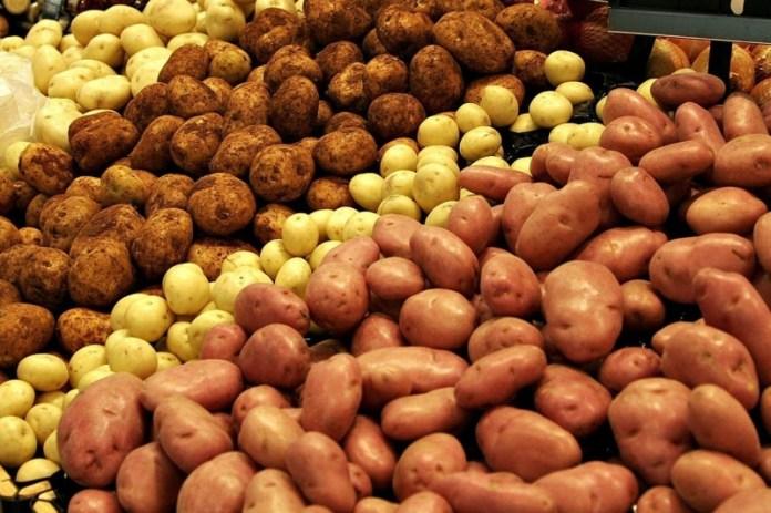 Как сохранить картофель без подвала?