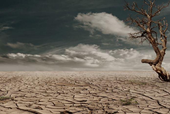 ) Что происходит с климатом