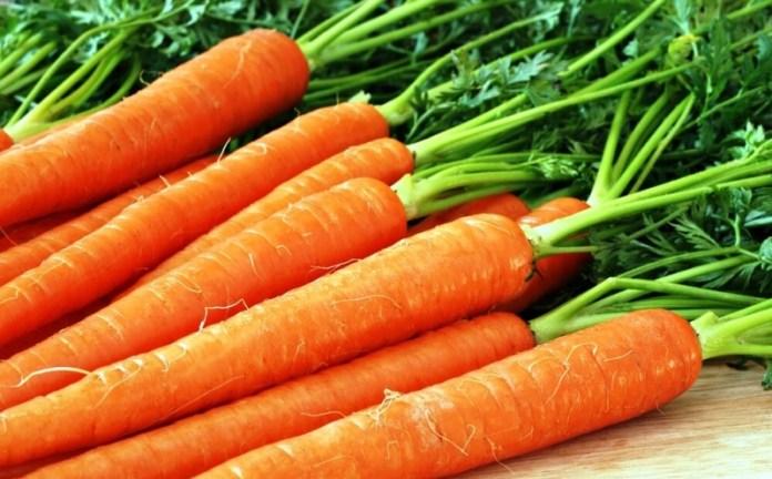 Когда сеять морковь для получения корнеплодов для зимнего хранения