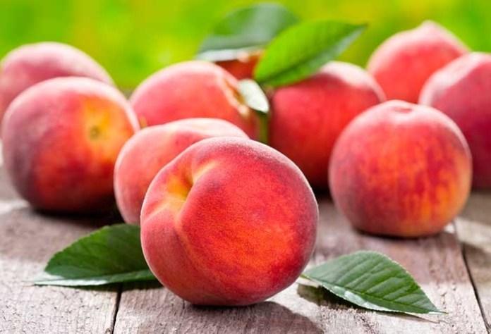 Как спасти персики от монилиоза?
