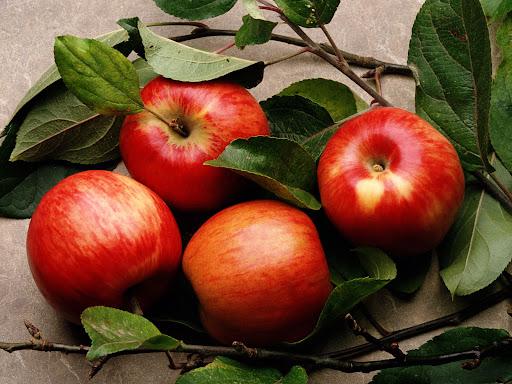 Як вживати яблука, щоб не нашкодити здоров'ю