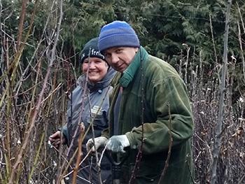 Опытные львовские садоводы рассказали о правильной посадке плодовых деревьев