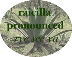 Raicilla pronounciation image