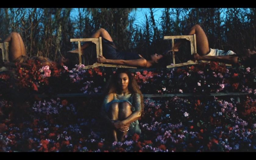 Beyonce Flower Field Insta