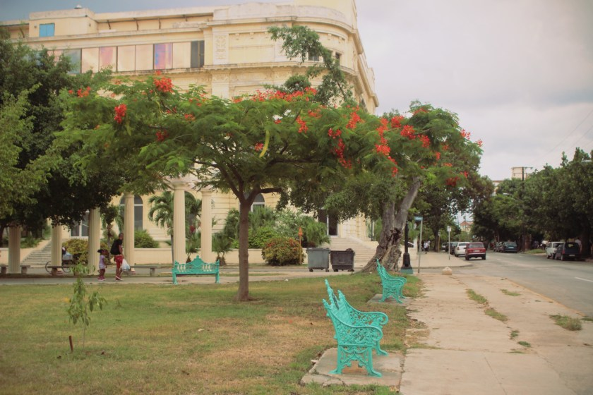 15 Park in Vedado by Nneya Richards