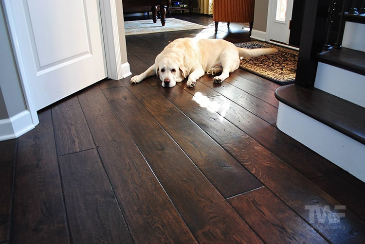 Difference Between Red And White Oak Oak