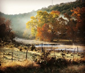 Misty Morning, Carol McAllen