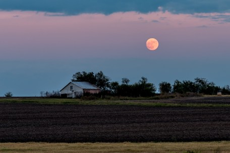 Super Moon, Shawn Hutcherson
