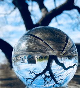 Crystal Ball by Cynthia Stein