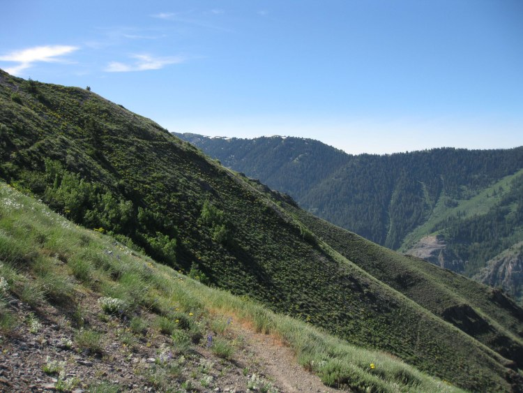 źródło: http://www.bear100.com/Course/PhotoTour