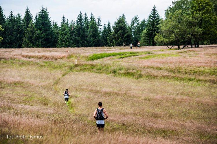 Supermaraton Gór Stołowych - biegacze na łące. Fot. Materiały organizatora