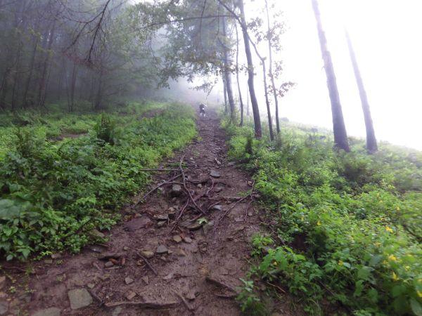 Podejście na Świtkową - prawdziwe wyzwanie jeszcze tonie we mgle. Fot. Marcin Suski