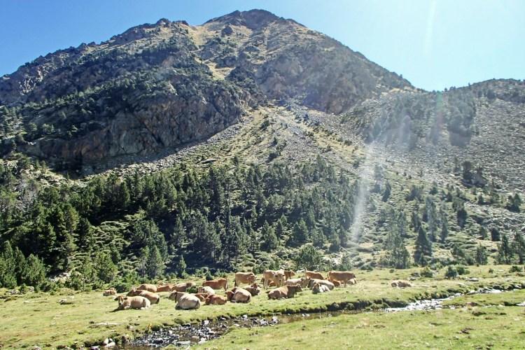 Jeden z klasycznych widoków w Pirenejach. Fot. AR Team