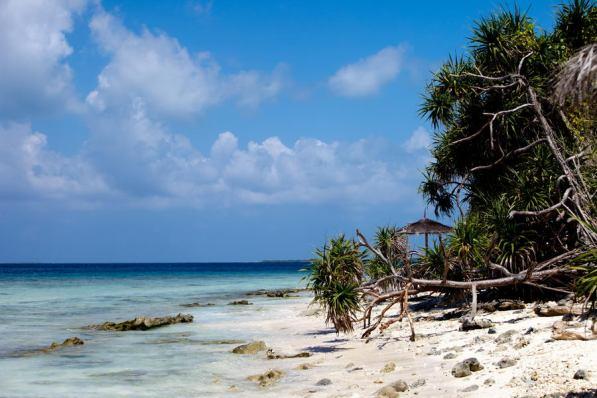 January 2010 Alidhoo, Maledives