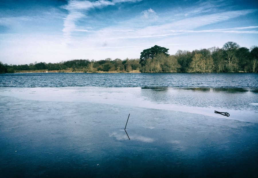 January 2015, Hatfield Forest Lake, Hatfield, UK