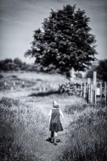 June 2015, Mudchute Farm, Isle of Dogs. London, UK