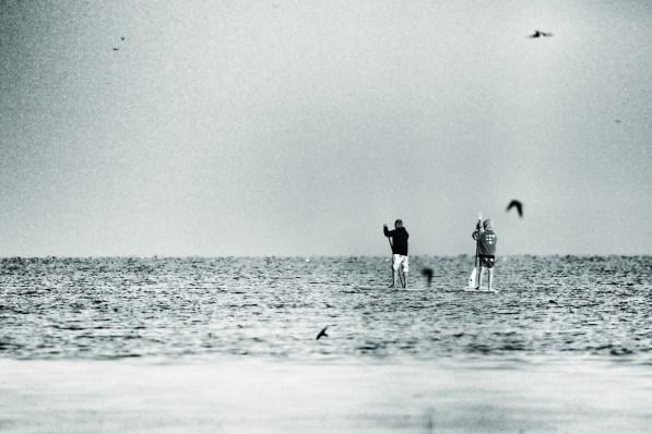 August 2015, Małe Morze, Hel, Poland