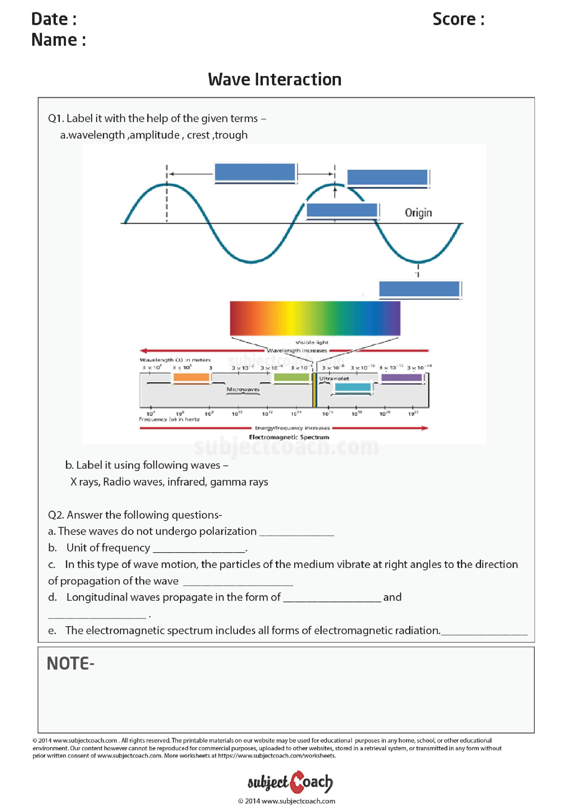 small resolution of Do science worksheets work for 7th graders? – Naplan Blogs for Students \u0026  Parents