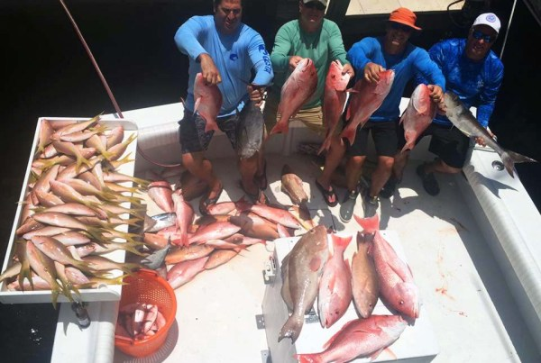 naples red snapper