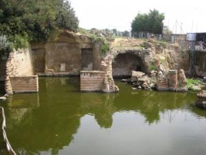 Miseno e Bacoli visita guidata quattro passi nella Storia