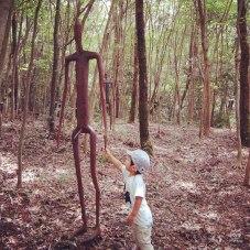 霧島アートの森