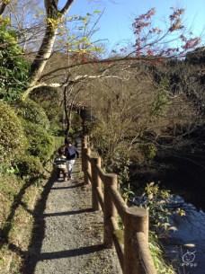 温泉まで、池の畔を歩いていきます。