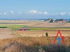 Зачем делать межевание земельного участка