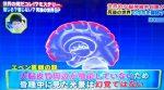 世界の何だコレ!ミステリー 脳科学の名医が天国は実在すると語る?