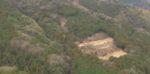 ポツンと一軒家を振り返る 山口県の林業を営んでいたアワハタ家