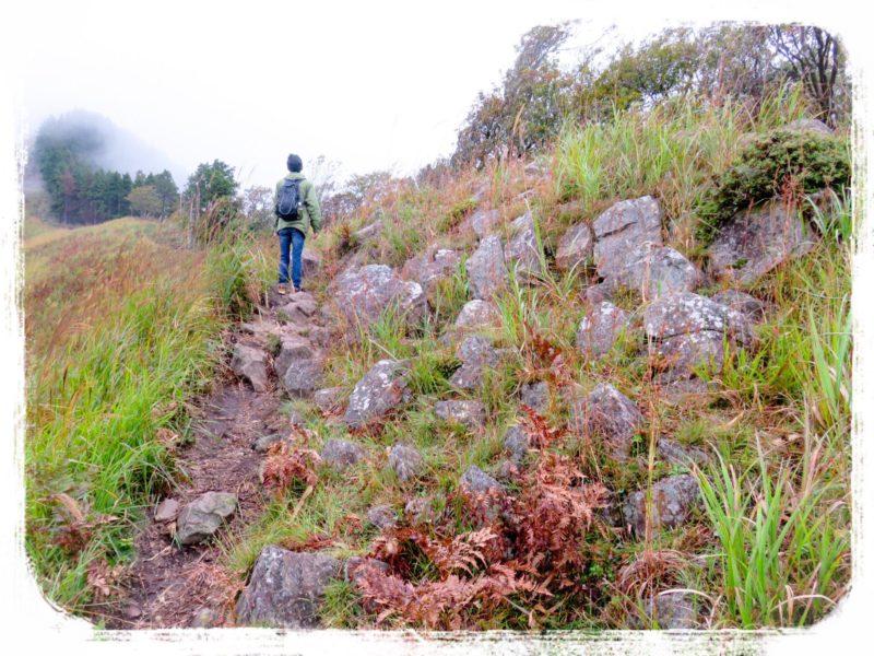 曽爾高原山道3