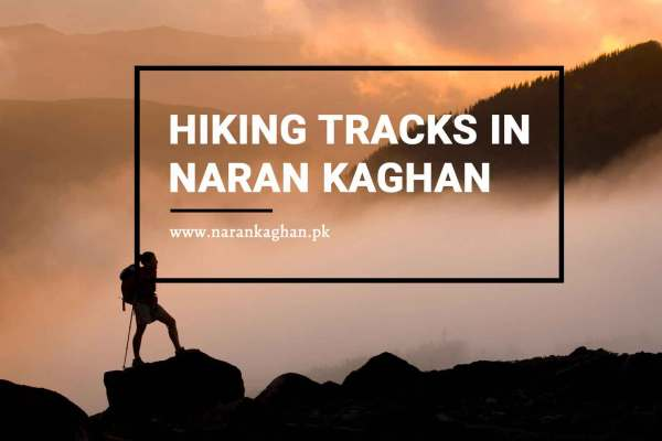 Hiking tracks in Naran Kaghan : A life time adventure