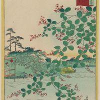 Viikon Basho haiku #8