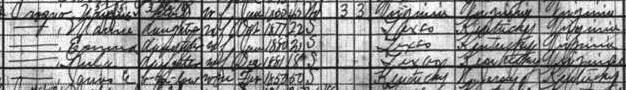 1920 census Crozier