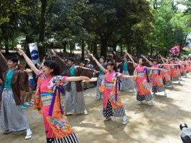 奈良バサラ祭り
